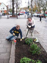 Bulb planting Dec09 004