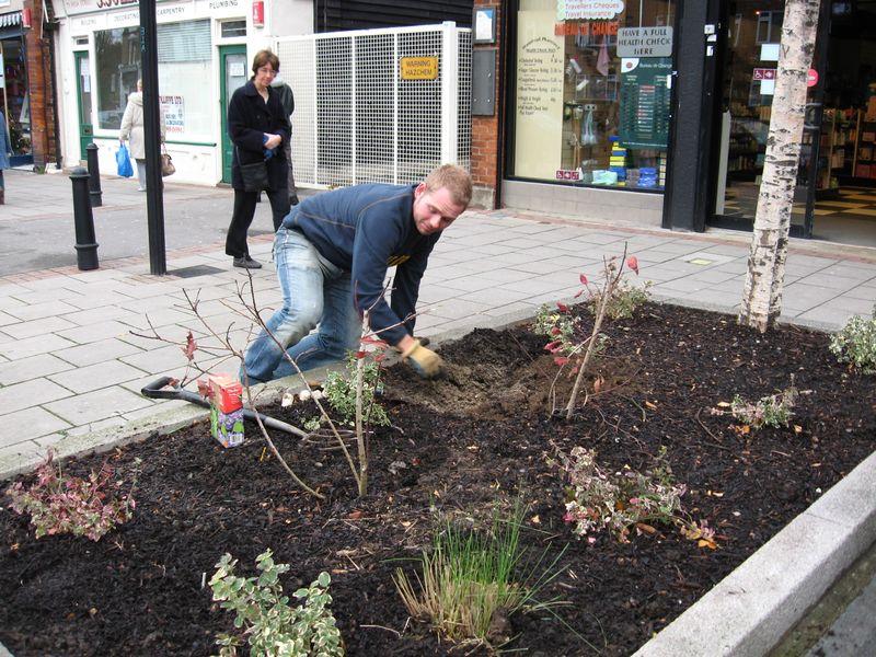 Bulb planting Dec09 001